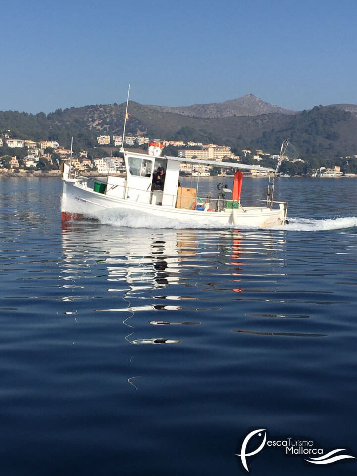 fishingtripmajorca.co.uk boat tours in Majorca with Hermanos Serra